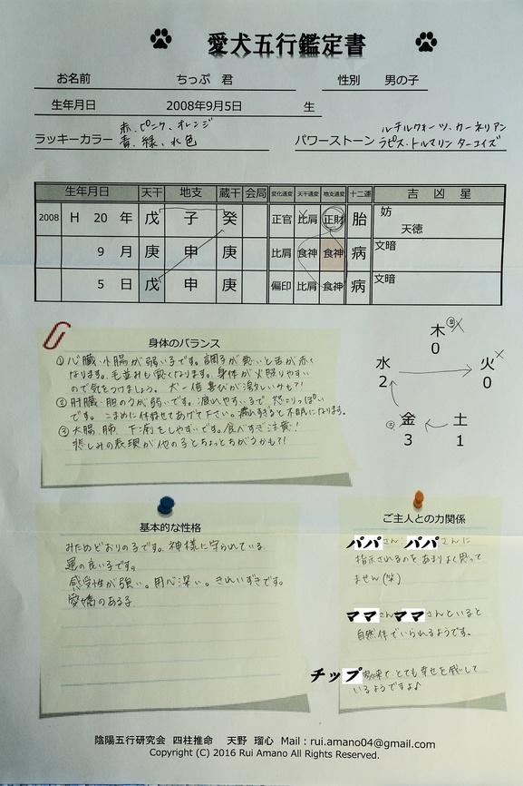 DPP_9438.JPG